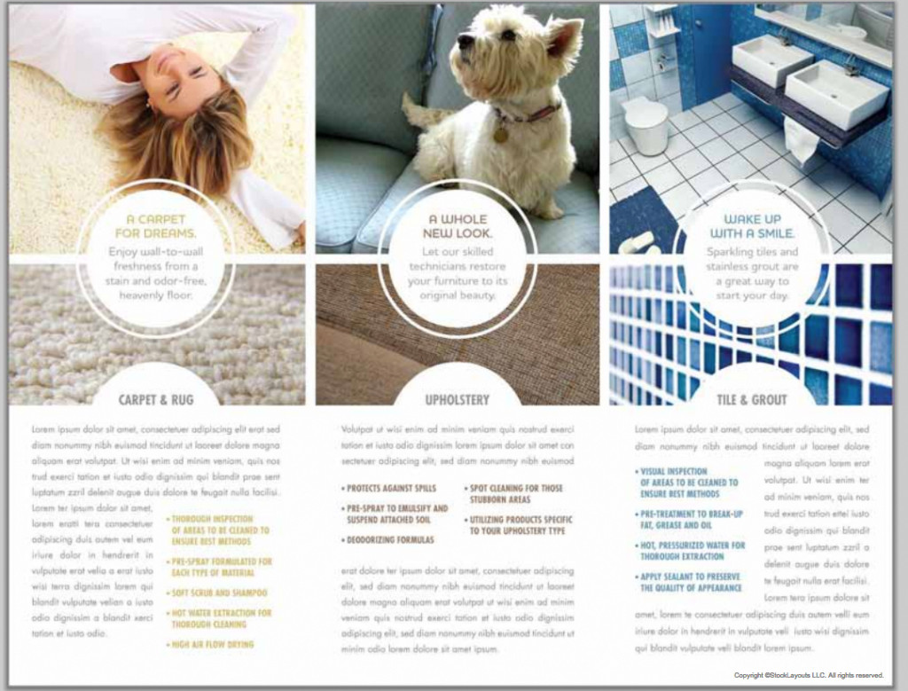 Brochure templates top 25 free and paid options carpet cleaners 6 custom brochure design with business card baanklon Gallery