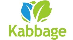 Why and when do small businesses borrow? An Interview With The CEO of Kabbage