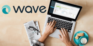 Wave Payroll Review