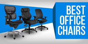 Best Office Chair – Executive, Mid-Back, & Task