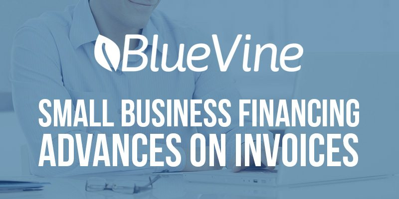 bluevine-blue