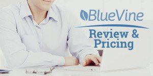 BlueVine Review