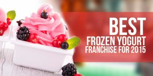 Best Frozen Yogurt Franchise: Get in on the FroYo Boom with These 9 Franchises