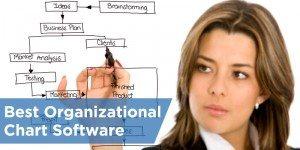 Best Org Chart Software: Organimi vs OrgPlus vs LucidChart