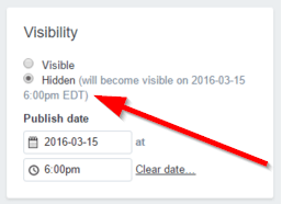 Shopify Page Edit Visibility