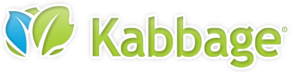 Kabbage - small business line of credit