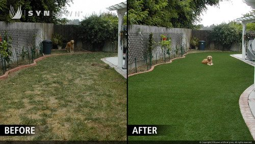 Lawn Care Before : After