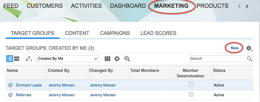 Email Marketing Groups in SAP Digital CRM