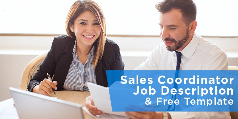 SalesCoordinatorJobDescriptionFreeTemplateJpg