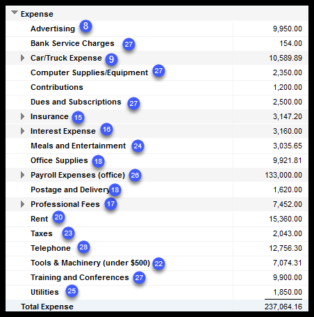Sample Profit and Loss Statement - Expenses