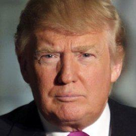 Donald Trump, small business news