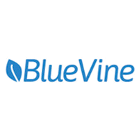 accounts receivable financing blue vine
