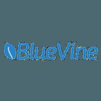 accounts receivable financing blue vine