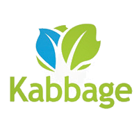 Kabbage-Improve Small Business Loan Application tips from the pros