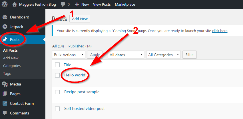 how to start a blog posts