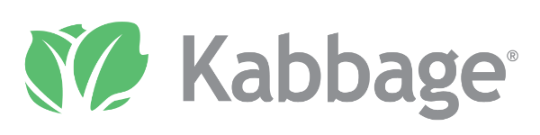 kabbage bad credit business loans