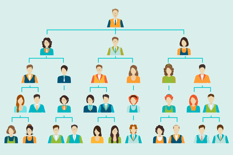 how to make a business organizational chart in 3 steps
