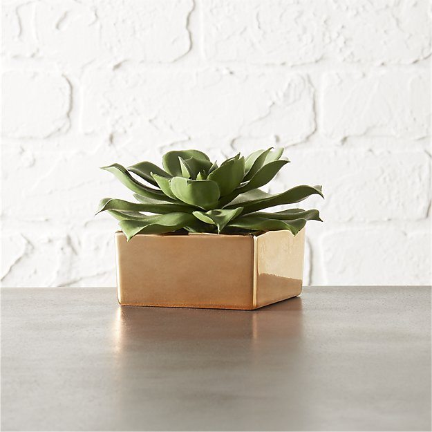 Potted Succulent With Copper Pot - Pop by Ideas