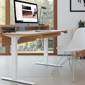 The Gadget Flow Electronic Adjustable Desk Office Gadgets