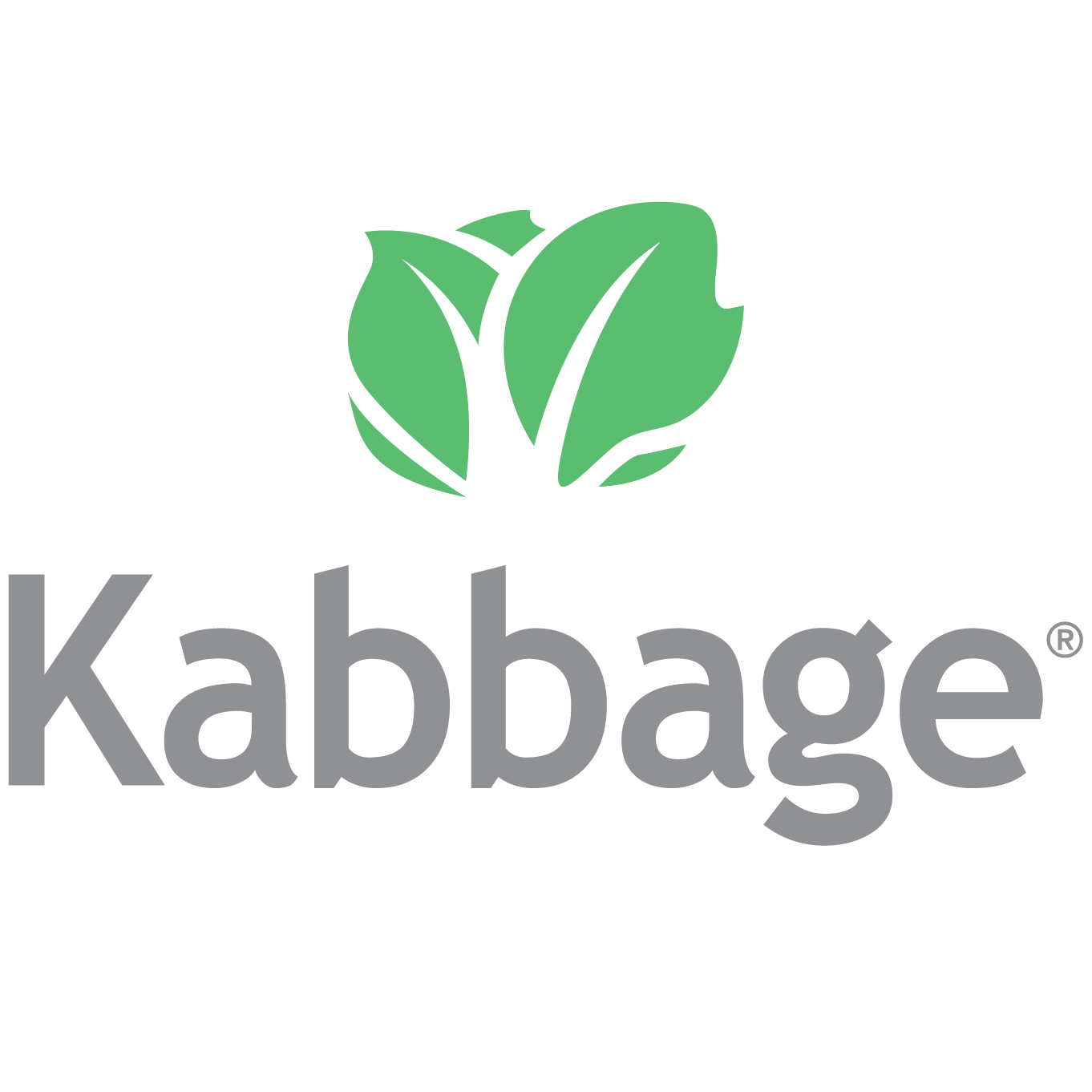 Dropshipping Tips kabbage
