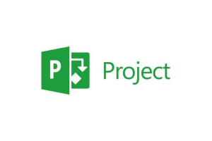 Microsoft Project Reviews