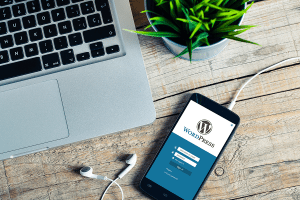 Top 25 Free & Paid WordPress Website Plugins From The Pros