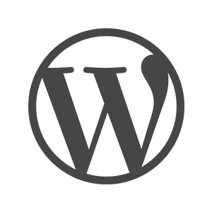 WordPress-Webydo Review