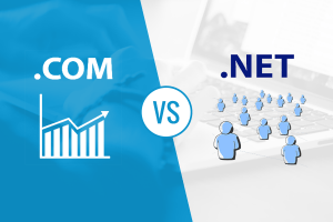 Com vs Net: The Difference Between Domain Extensions