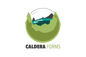 Caldera Forms Reviews, Pricing & Popular Alternatives