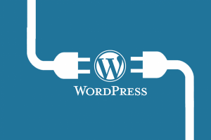 WordPress Plug-in Definition, Providers & How to Install One