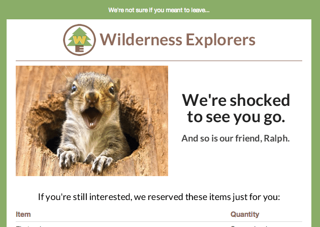 Wilderness Explorers-Abandoned Cart Email-Tips from Pro