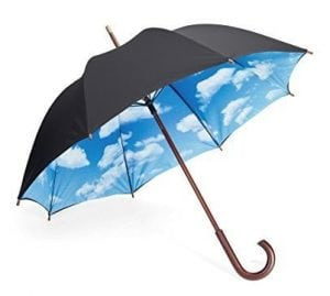 Blue Sky Umbrella gifts for realtors
