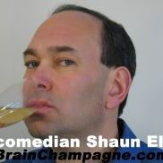 Shaun Eli Breidbart - domain name ideas - Tips from the pros