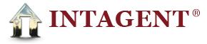 intagent real estate website design companies