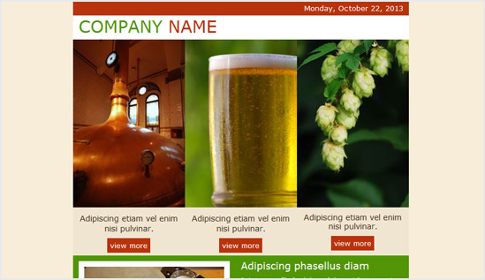 Brewery - email newsletter templates - Tips from the pros