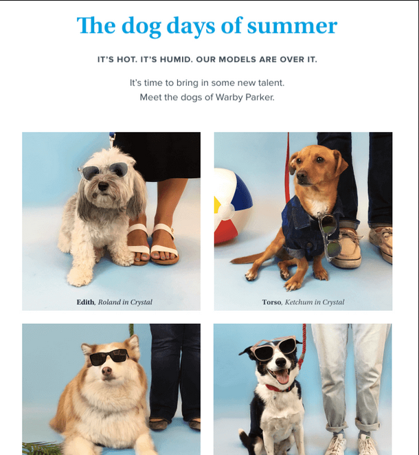 Warby Parker - email newsletter templates - Tips from the pros