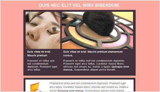 Spa and Beauty - email newsletter templates - Tips from the pros