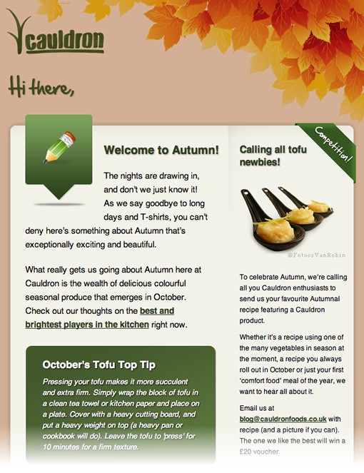 Cauldron - email newsletter templates - Tips from the pros