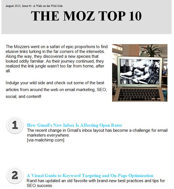 Moz - email newsletter templates - Tips from the pros