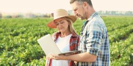 farm accounting software