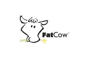 FatCow reviews