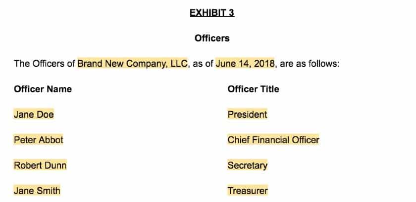 Screenshot of LLC Operating Agreement Template Exhibit 3