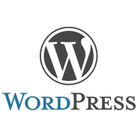 Wordpress - new real estate agent tips - tips from the pros