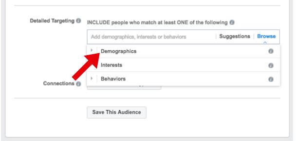 Demographics Targeting - facebook ad targeting