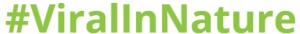 ViralinNature instagram marketing service