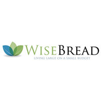 Wise Bread - financial mistakes - Tips from the pros
