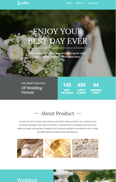 Screenshot of Wedding Planner Newsletter Template