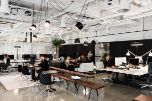 Open Office with Employees