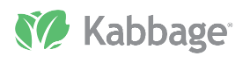 Kabbage - square capital