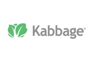 Kabbage reviews